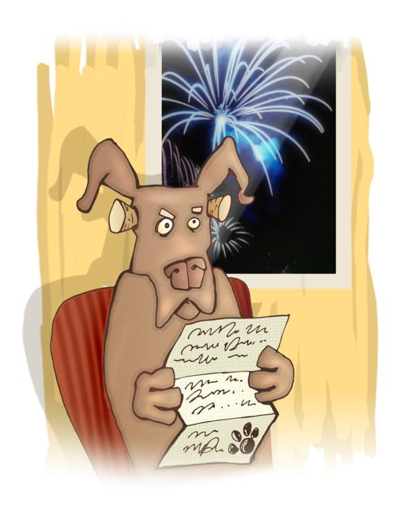 Why Are Dogs Scared of Fireworks?  11 Things You Should Know.