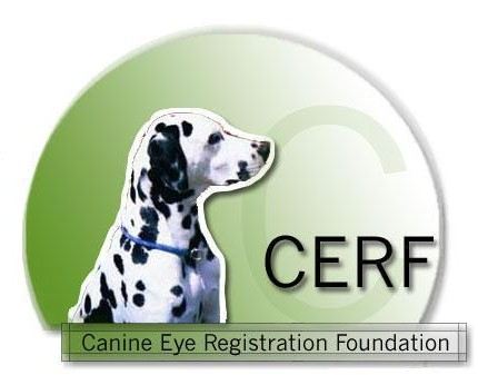 Canine Eye Registration Foundation